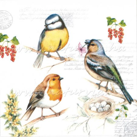 Szalvéta ÁLLAT, MADARAK 03