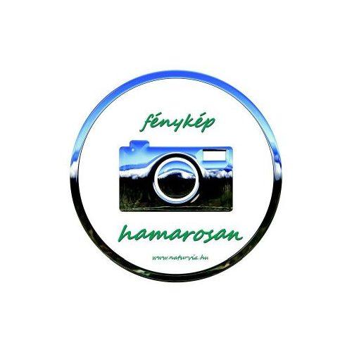 Aromalámpa, fehér alapon piros karácsonyi mintákkal