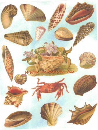 decoupage (dekupázs) papír, soft, 24*30 cm tengeri állatok 02 - UTOLSÓ DARAB!!!