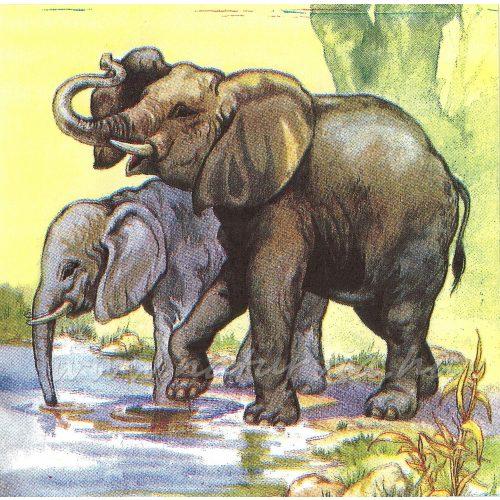 Szalvéta ÁLLAT, elefántok