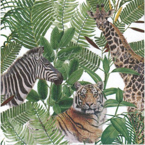 Szalvéta ÁLLAT, AFRIKA / SZAFARI / VADÁLLATOK + levelek (zsiráf, zebra, tigris, elefánt)