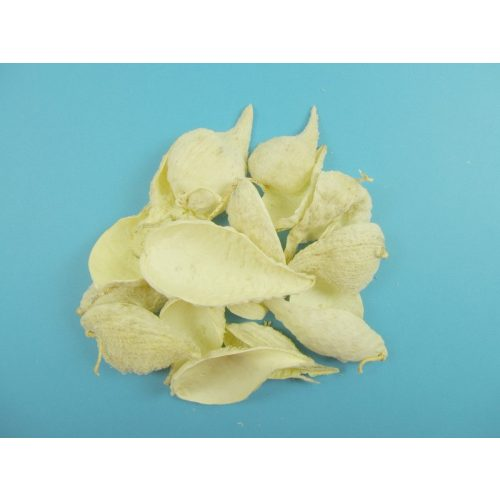 Szárított növény, VADDOHÁNY FEHÉRÍTETT (35 g / csomag)