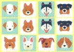 állatos minták